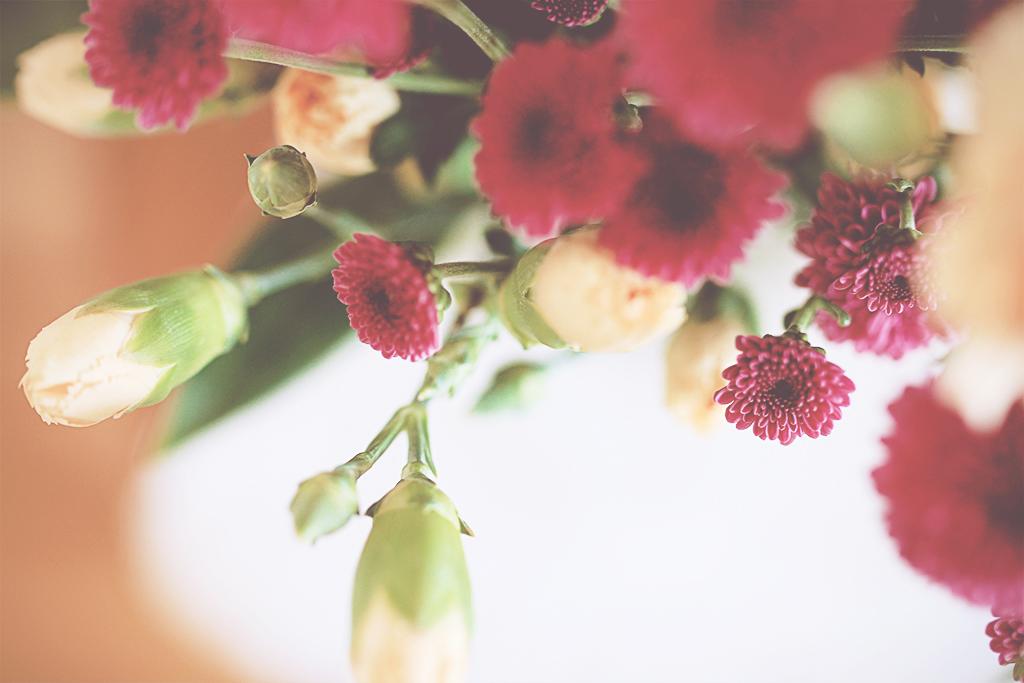 bonar-o-blommor-06
