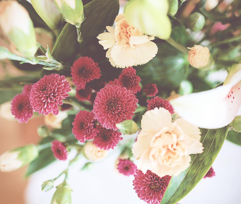 bonar-o-blommor-07