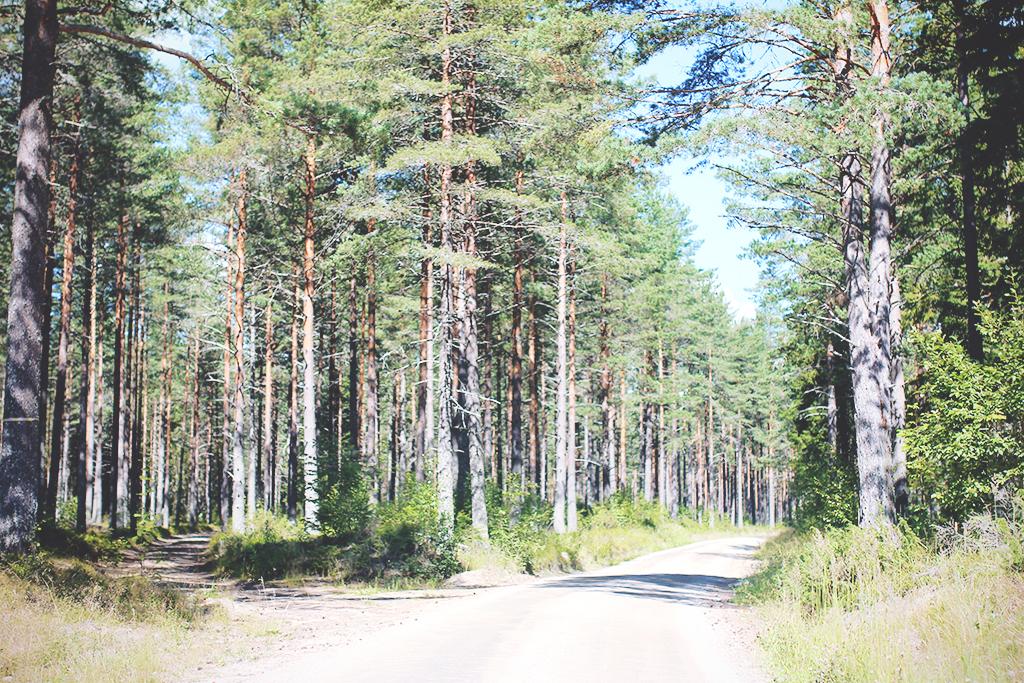 resan-mot-frisbo-03