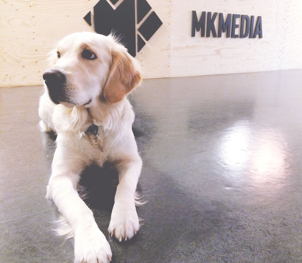 mkmedia-3
