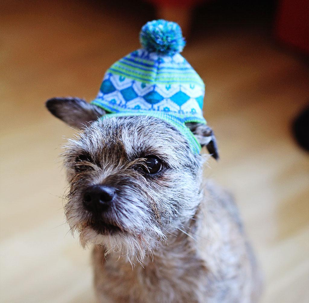 asta-hatt-3