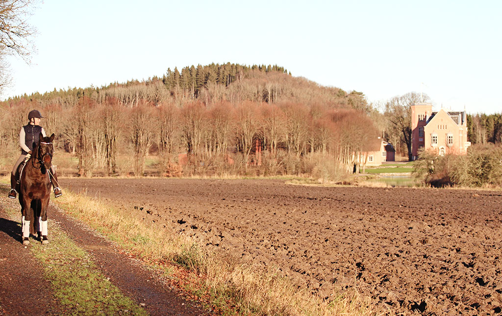 battis-gasevadsholm-19