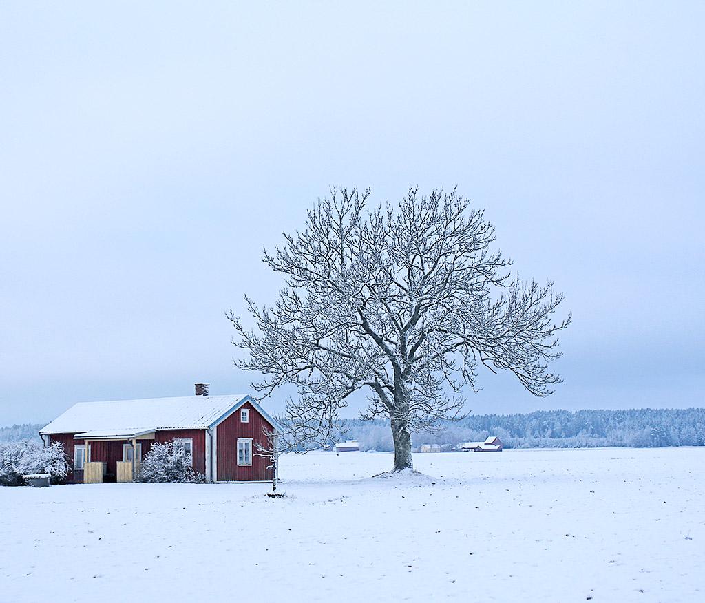 vinterland-02