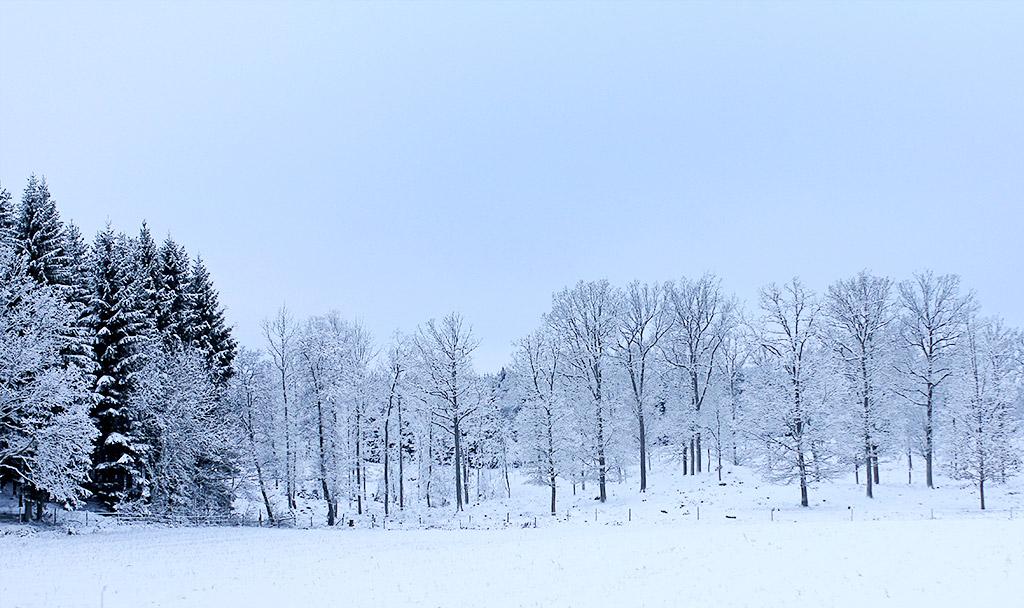 vinterland-03