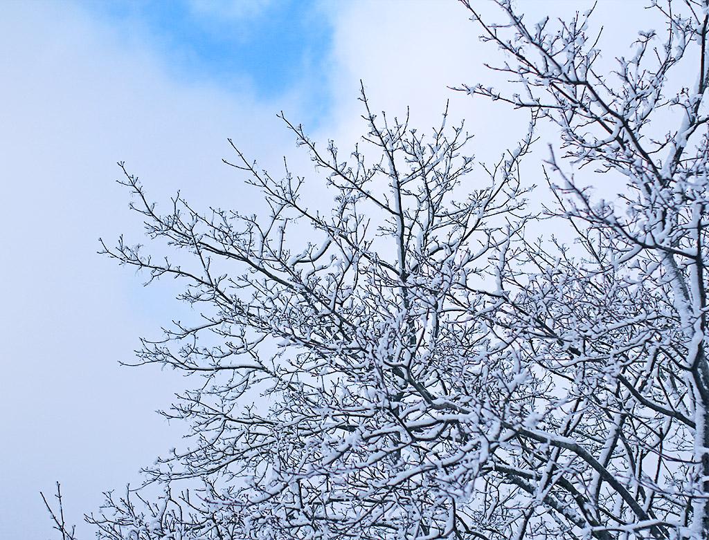 vinterland-04