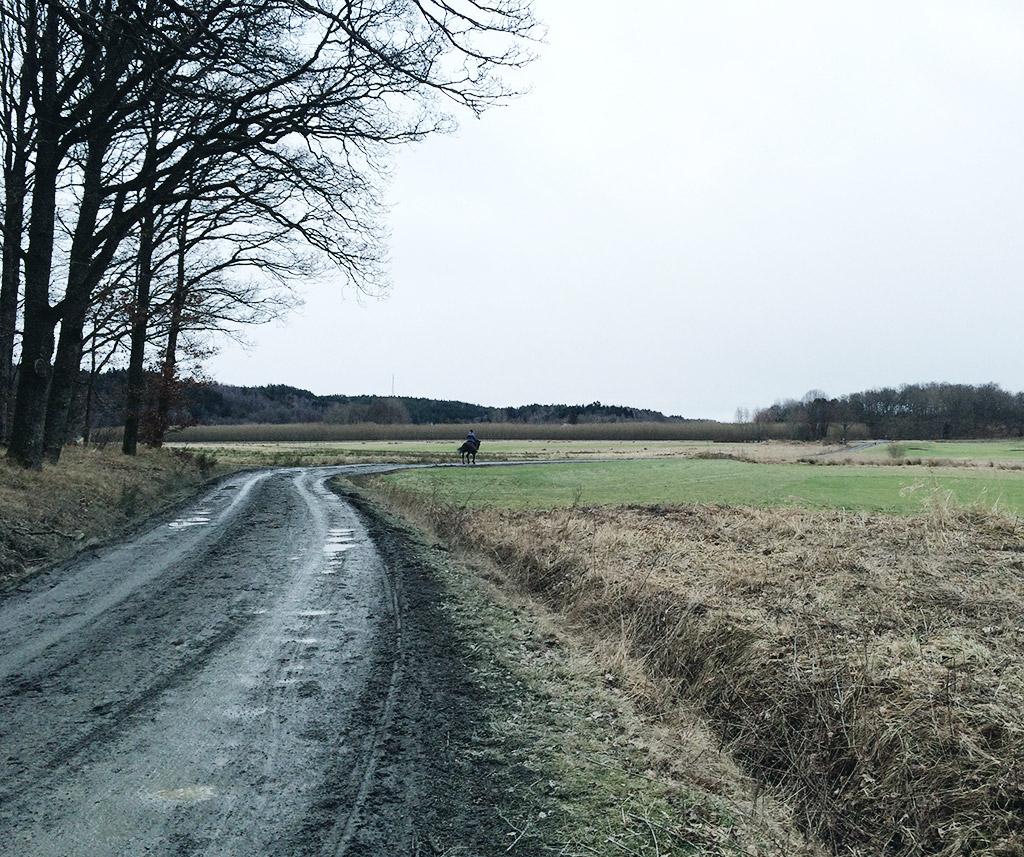 februari-lera-01