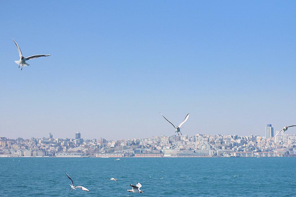 istanbul-sondag-16