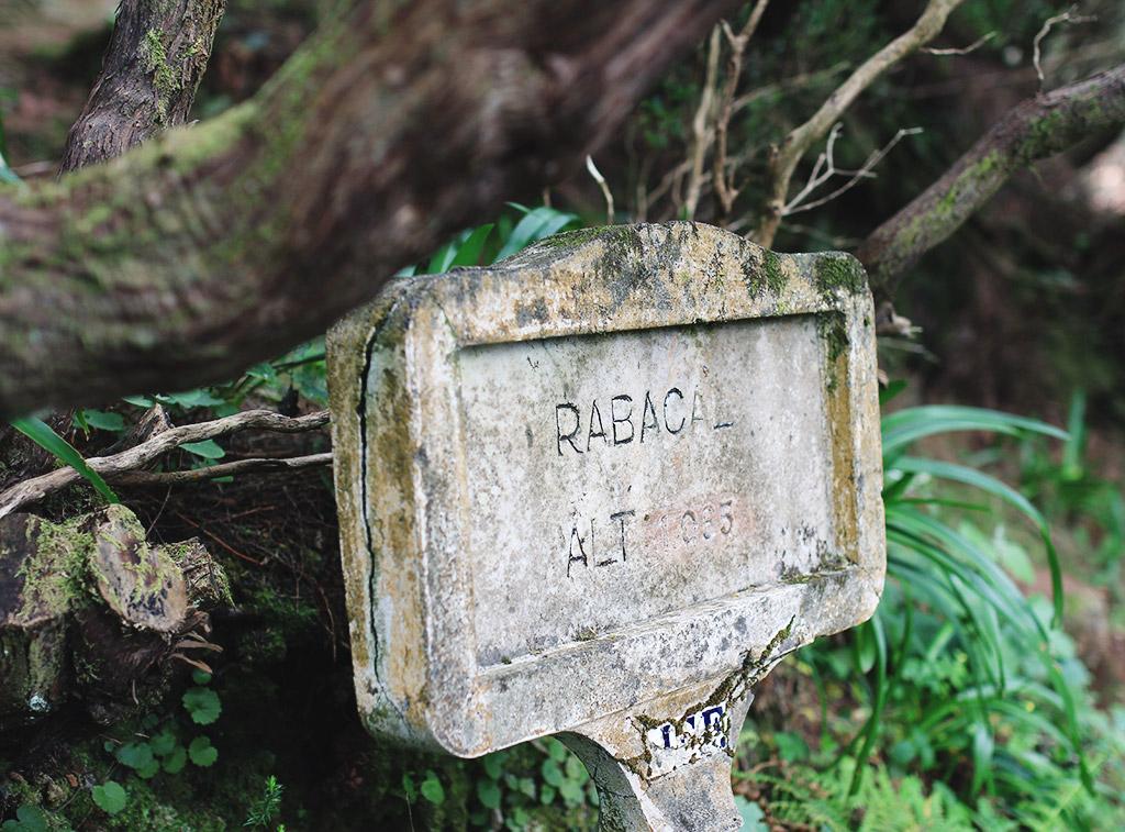 madeira-3-18