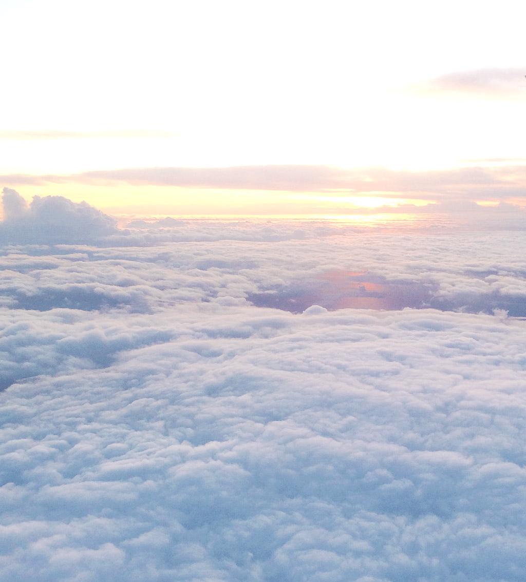 moln-13