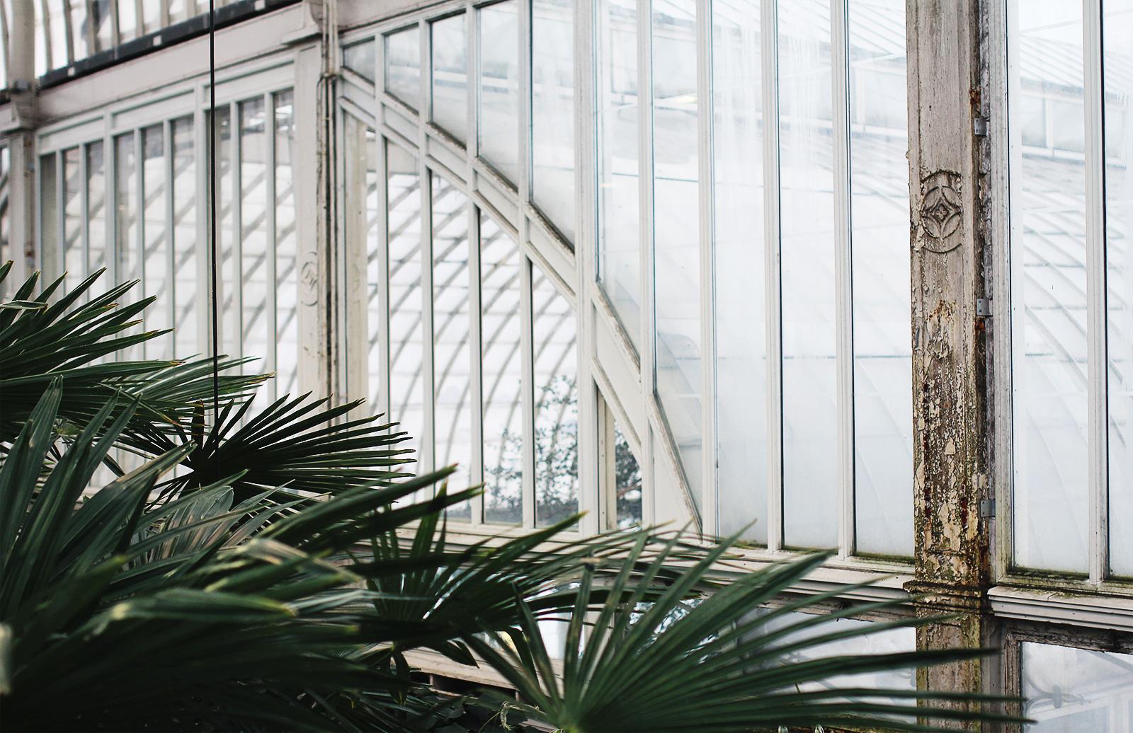 palmhuset-20