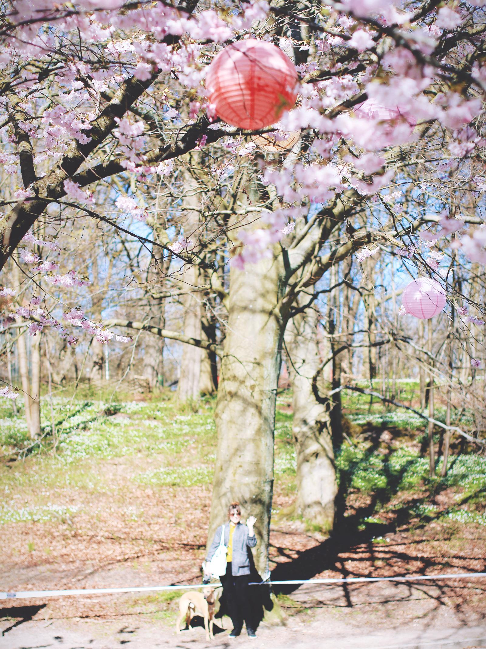 toughest-spring-05